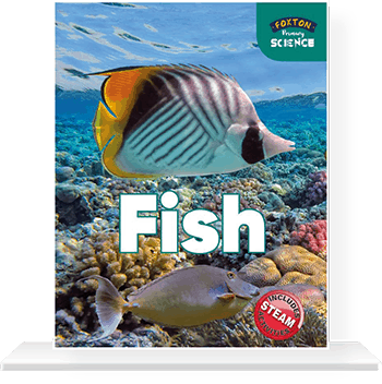 Cover-with-shelf-FISH