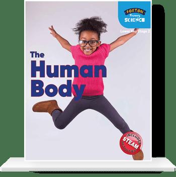 Lower-KS2-Human-Body