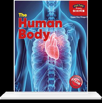 The Human Body KS2 Science